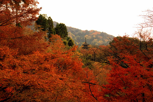 View From Kiyomizudera Temple