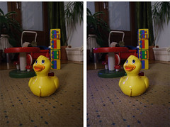 Stereographic toy duck (MikeAncient) Tags: door plant mushroom train toy carpet duck stereogram stereophoto stereophotography 3d basket livingroom indoors rug toadstool stool stereograph threedimensional stereophotograph toyduck thirddimension