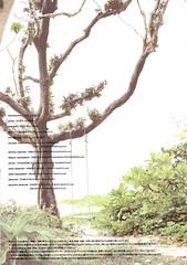 菅谷梨沙子 画像89