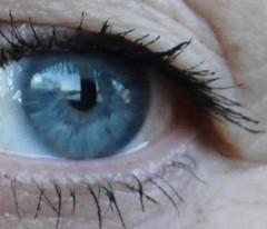 BLUE EYE (Siri Chandra) Tags: blue sea color colour eye colors beauty colours blueeyes lagoon hereyes mrsn