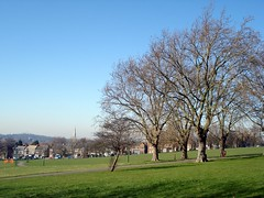 Picture of Hilly Fields