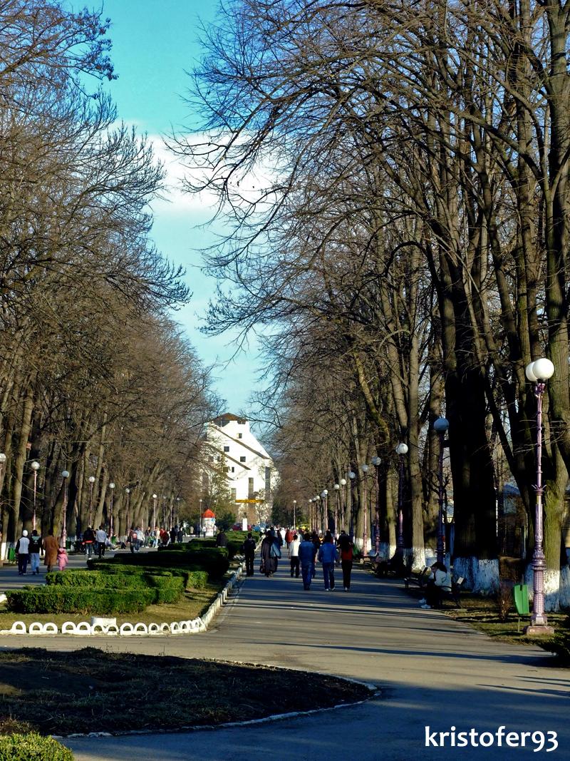 Parcul Cancicov Bacau - Februarie 2008