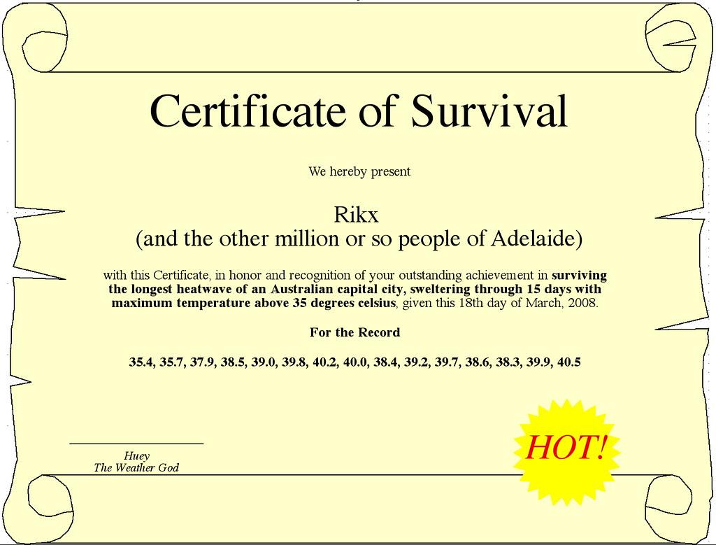 Art Therapy Certificate Best Design Sertificate 2018