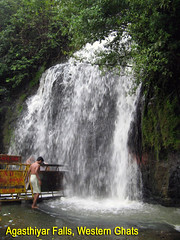 Waterfalls of India - brought to you by TripsGuru.com
