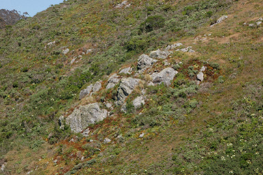 3rocky-outcropping.jpg