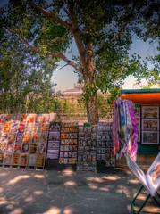 book shops on banks of La Seine (alainlm) Tags: paris france
