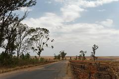 DSC06842_DxO Startpunkt der 60 km Fahrradtour_Bildgröße ändern (Jan Dunzweiler) Tags: afrika madagaskar fahrradreise radreise momotas africanbikers jandunzweiler horombe horombeplateau