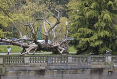 Flying Spaghetti Monster of Stanley Park