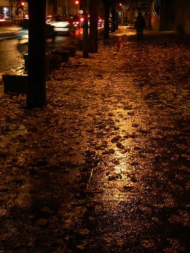 c'est l'automne, c'est sûr!