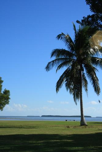 Everglades National Park 12-1-07 076