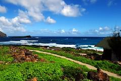 Hava (Windward Coast) Makapu'u Beach Park 137 (Arnaldo (Interata)) Tags: makapuubeachpark halonablowhole makapuubeach makapuulookout