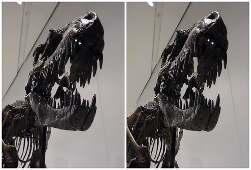 3D Dinosaur 02