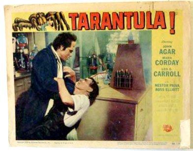 tarantula_lc2