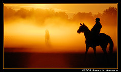 A Horse and the Ghost of One (Rock and Racehorses) Tags: horse orange mist ny newyork reflection oklahoma silhouette fog speed sunrise dawn bravo track slow walk saratoga ghost fast rider soe thoroughbred contrejour gallop themoulinrouge racehorses galope nyra flickrsbest fivestarsgallery mywinners mywinner anawesomeshot colorphotoaward irresistiblebeauty superbmasterpiece top20yellow citritart zonereflex betterthangood theperfectphotographer thegoldendreams veryflickr alemdagqualityonlyclub