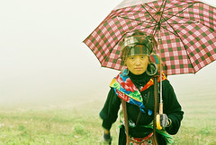 hidden.baby (toeytoeytoeytoeytoey) Tags: travel winter mist mountain black tree fog trekking f80 sapa hmong laocai 2007 hilltribe nikkon veitnam