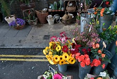 Borough Market Flowers