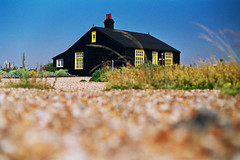 derek jarman's gaff (lomokev) Tags: wood england plants house black weather 50mm dof stones low ground depthoffield dungeness derekjarman agfa ultra agfaultra eos1 ratseyeview canoneos1 derekjarmansgarden derekjarmanshouse file:name=070208eos1083