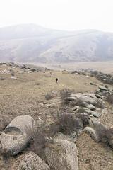 Khustai