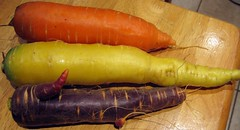 The Three Carrots (T o w n i e) Tags: vegetables traditional carrot tuesday yellowwhite orangecarrot purplecarrot 7daysofshooting traditionaltuesday