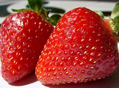 Strawberry time (RobyD) Tags: food colour nature fruit strawberry soe fragole supershot flickrsbest mywinners colorphotoaward robyd diamondclassphotographer goldstaraward rotrossorougerood ilovemypics
