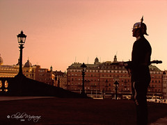 Stockholm, Sweden 073 - Early morning - Royal Guard at the Stockholm Palace