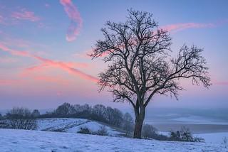 *winter morning*