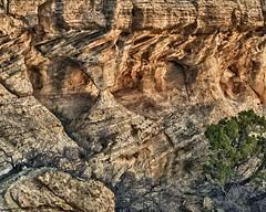 Canyon del Muerto Canyon Wall (Ken'sKam) Tags: arizona nature arch cove geology westernusa canyondelmuerto southwesternusa