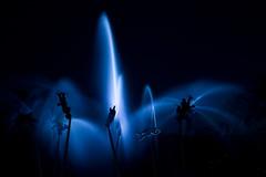 Clair obscur aquatique (Arnaud Sagnier) Tags: fountain night loire fontaine nuit nantes arnaud atlantique sagnier mygearandme
