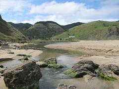 IMG_0857 (Stu Lloyd) Tags: newzealand beach napier waipatiki