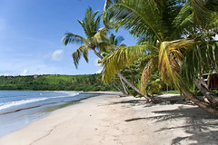 La Sagesse Beach (SunCat) Tags: travel vacation beach all grenada caribbean 2007 lasagesse
