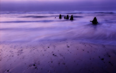 Dusk at the Neskowin Ghost Forest (Zeb Andrews) Tags: ocean film beach water oregon twilight surf purple dusk doubleexposure pacificocean pacificnorthwest neskowin orton pentax67 ghostforest justlikeheaven fujipro160c bluemooncamera zebandrews zebandrewsphotography