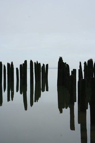 reflected pilings