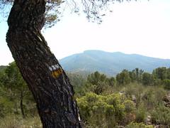 Vista del Pico Despeñador