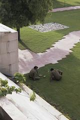 At Gandhi's cremation site