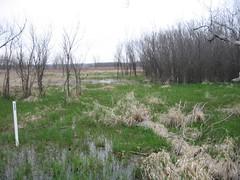 Wetland Learner - Student Pix (Kaw Valley Heritage Alliance) Tags: lawrencekansas wakarusawetlands wetlandlearners