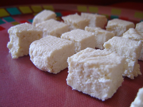 Homemade Paneer