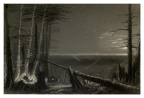 009-Bosque en el lago Ontario 1840