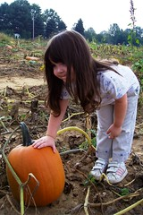 Julia picks her pumpkin