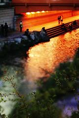 2103/1746*:+^z] (june1777) Tags: street light reflection night zeiss canon eos stream snap jena e carl seoul adapter 5d 3200 tilt f28 80mm czj cheongyecheon biometar hartblei anawesomeshot