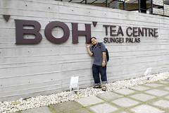 ND (irwandy) Tags: cameron malaysia nd cameronhighlands teaplantation boh perak bohtea irwandy sungaipalas sungeipalas sgpalas ladangteh