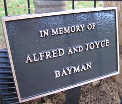 Alfred & Joyce's Tree - Plaque (Clive Andrews) Tags: park autumn tree leaves dedication plaque memorial andrews memory clive hertfordshire treeplanting pottersbar bayman oakmerepark img9390jpg cliveandrews