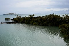 View from Rangitoto