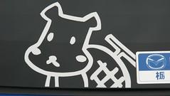07W016 (munyaka) Tags: ariake comiket   itasha  comiket73 73