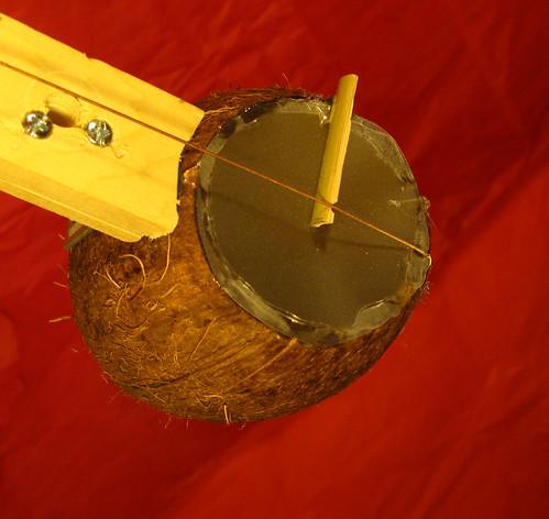 coconut banjo