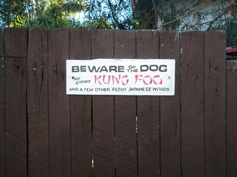 kung foo