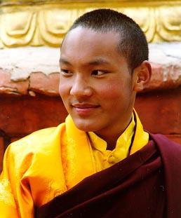 Préparation de la visite du 17ème Gyalwa Karmapa à Bruxelles en 2010 2411952571_2b2f7e53c9_o