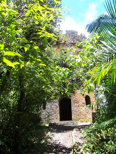 el yunque forest, pr