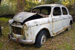 Morris (dalinean) Tags: old car bush decay sigma australia wa morris wreck sd10 westaustralia