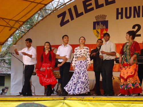 Visite a Hunedoara (251)