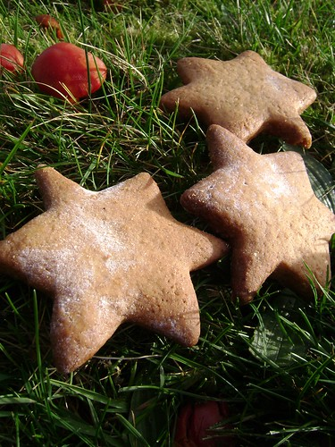 Gingerbread Stars in the Wild